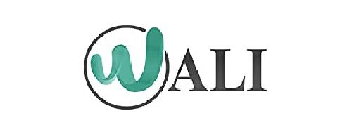 WALI Dual LCD Monitor Fully Adjustable