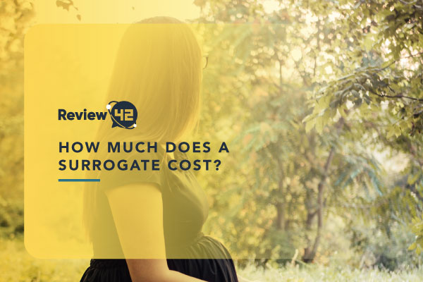 How Much Does a Surrogate Cost [All Costs Explained]