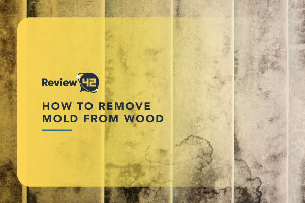 Ways to Remove Mold from Wood Surfaces [How-to Guide]