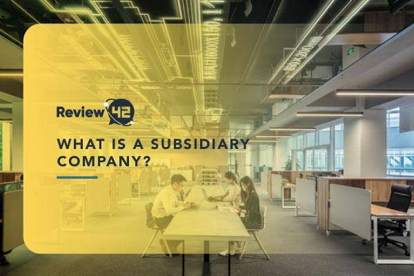 Subsidiary Companies [Examples, Pros & Cons]